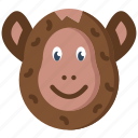 animal, monkey, pet, wild