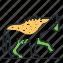 animal, hyena, predator, scavenger
