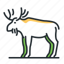 animal, antlers, forest, moose icon