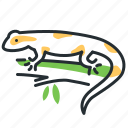amphibian, animal, salamander, terrarium icon