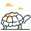 animal, land, reptile, tortoise icon