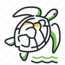 animal, marine, reptile, turtile icon
