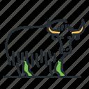 animal, hooved, horned, yak icon