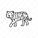 animal, carnivore, cat, jungle, tiger, wild, zoo icon