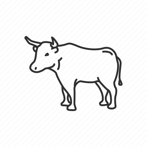 animal, bull, bullock, cattle, horns, mammal, ox icon