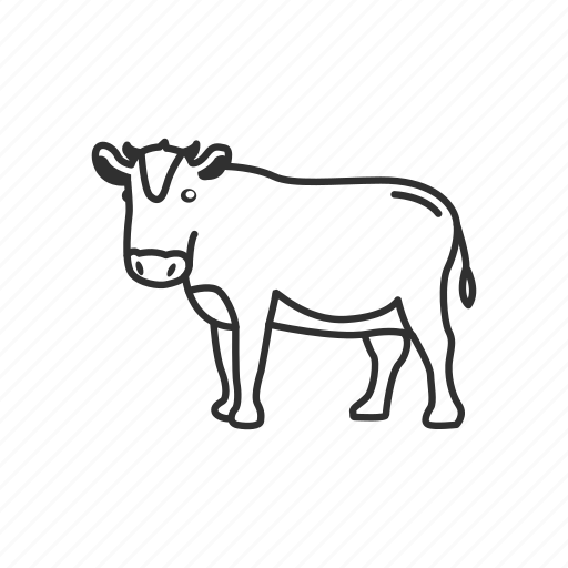 agriculture, animal, beef, cow, farm, milking icon