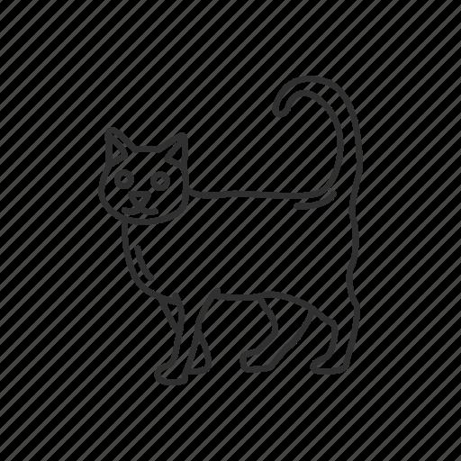 Animal, cat, feline, gato, kitty, pet icon - Download on Iconfinder
