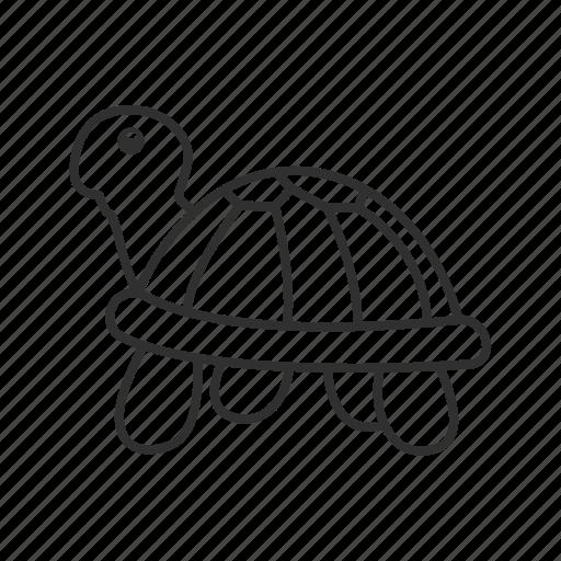 amphibian, animal, emoji, pet, slow, turtle, water animal icon