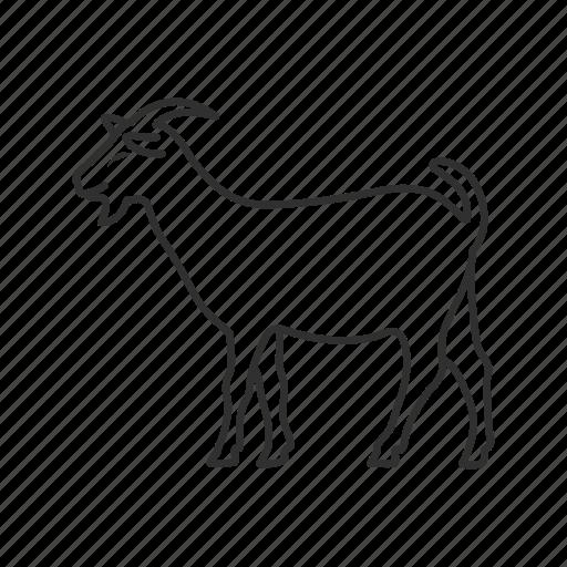 farm, goat, goatee, livestock, mammal, ram, sheep icon