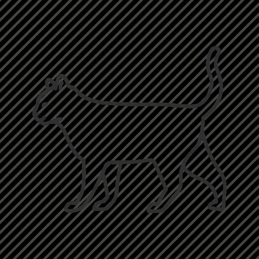 cat, cat full body, domestic cat, emoji, feline, pet, walking cat icon