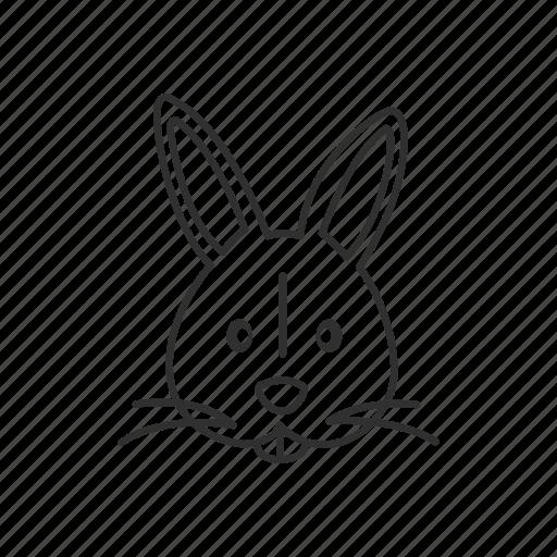 animal, bunny, cute rabbit, easter, pet, rabbit, rabbit face icon