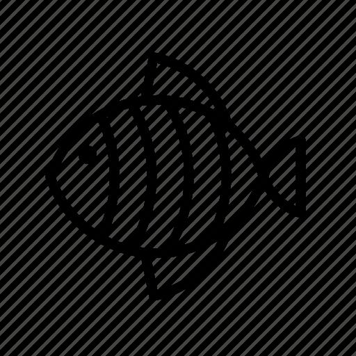 animal, animals, fish, striped, wildlife icon