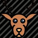 animal, deer, pet, wild icon