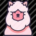 alpaca, sheep, fluffy, pet, animal, farm, character icon