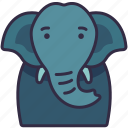 elephant, animal, creature, wildlife, character icon