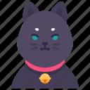cat, neko, bell, pet, animal, domestic, character