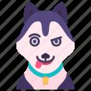 husky, animal, avatar, pet, creature, dog, character