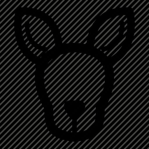 animal, cute, kangaroo, kangaroo face icon