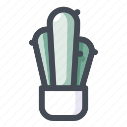 cactus, decor, design, house, nature, plant, pot icon