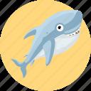 aquatic creatures, fish, ocean, sea, shark icon