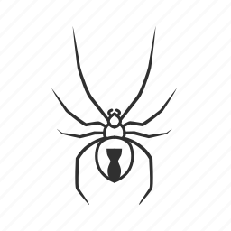arachnid, black widow, bug, deadly spider, latrodectus, poisonous spider, spider icon
