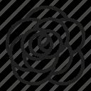 aroma, flower, rose icon