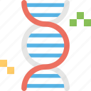 chromosome, dna, dna helix, dna strand, genetics icon