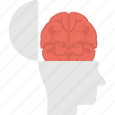 brain, human brain, human head, intelligence, open mind icon