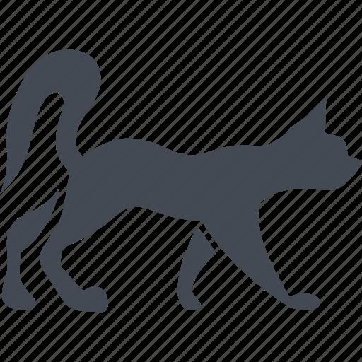 animal, cat, cats, pet icon