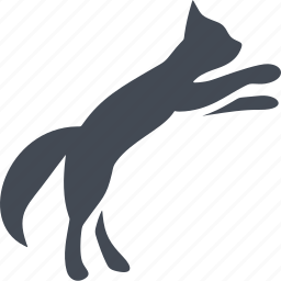 animal, bounce, cat, cats, pet icon