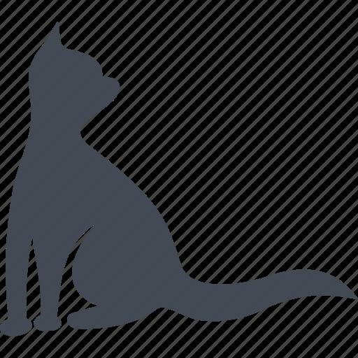 animal, cat, cats, kitten, pet, pets icon