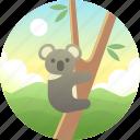 animal, australia, bear, eucalyptus, koala, marsupial, wildlife icon