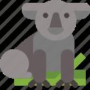 animal, australia, koala icon