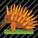 animal, australia, echidna icon