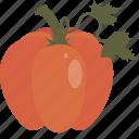 autumn, halloween, pupmkin icon