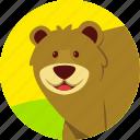animal, bear, carnivor, forest, strong, wild