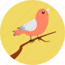 autumn, bird, bird on branch, environment, fly, nature, tweet icon