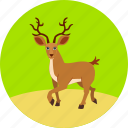 animal, autumn, christmas, deer, ecology, forest, nature icon