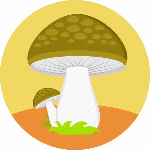 eco plant, forest, fungus, mushroom, nature, poisonous, vegetable icon