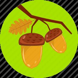 acorn, autumn, branch, clubs, hazels, nature, tree icon