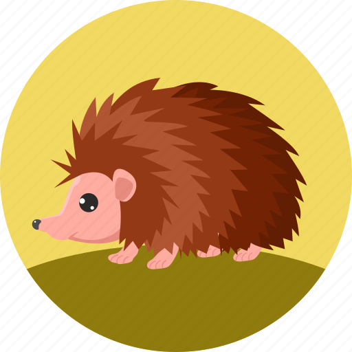 animal, arici, autumn, hedgehog, porcupine, spines, thorns icon