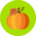 autumn, fruit, nodle, noggin, orange, pumpkin, vegetable icon