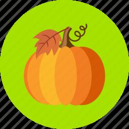 autumn, fruit, nodle, noggin, orange, pumpkin, vegetable icon