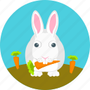 animal, autumn, bunny, carrots, garden, rabbit, rabbit eating carrots icon
