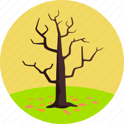 autumn, environment, leaves, nature, plant, tree, tree without leaves icon