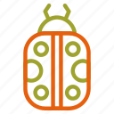 animal, autumn, bug, fall, insect icon