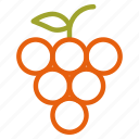 autumn, fall, fruit, grape icon