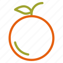 autumn, fall, fruit, orange