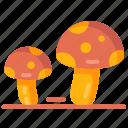 fungi, fungus, mushroom, oyster mushroom icon