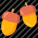 acorn, autumn, nut, peanut icon